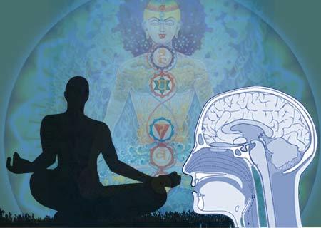 creierul si meditatia